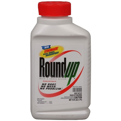 Roundup Weed & Grass Killer Concentrate Plus 1pt