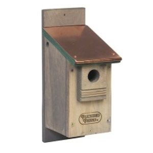Feathered Friend Bluebird House w/ Copper Roof