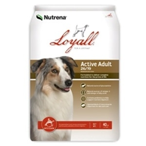 Active Adult Dog Food, 20 Lbs.