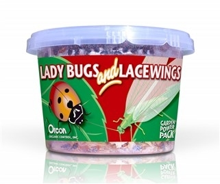 Lady Bugs and Green Lacewings (Combination Pack)
