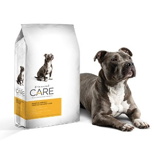 Diamond Care Sensitive Stomach Dry Dog Food, 8 lbs.