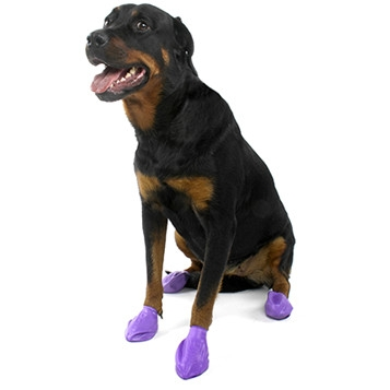 Pawz Max Wax Large Dog Boots