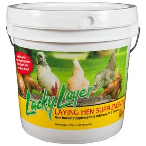 Lucky Layer 12lb Supplement for Chickens