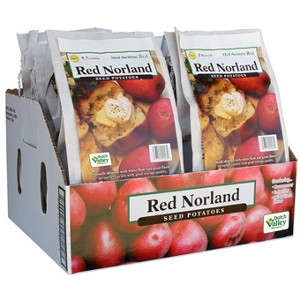 Seed Potatoes – Red Norland 5lb Bag