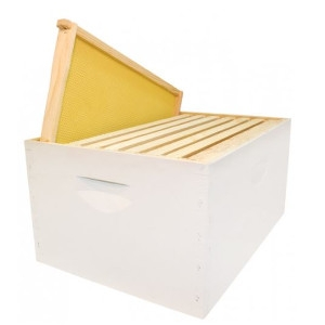 Deep Hive Box With Frames