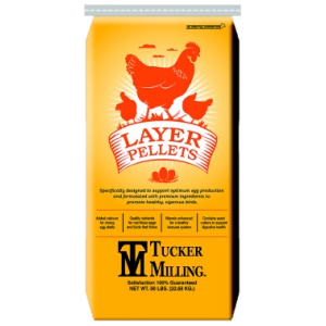 16% Layer Pellets Chicken Feed
