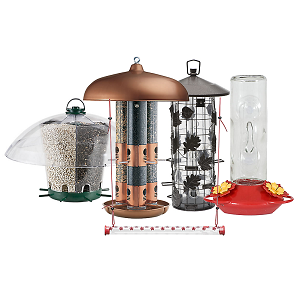 Perky Pet Bird Feeders