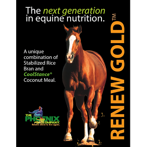 Renew Gold™ Non-GMO Equine Supplement