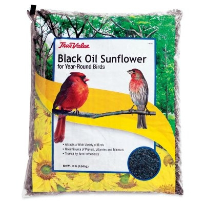 Black Oil Sunflower Seed, 10 lbs.
