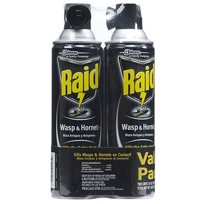 Raid® Wasp & Hornet Killer, 14oz. 2-Pack