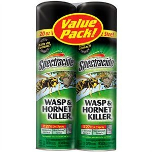 Wasp & Hornet Killer, 20-oz. Aerosol, 2-Pk.
