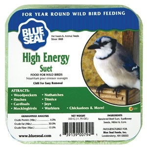 High Energy Suet