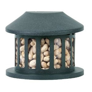 Squirrel Diner Feeder Medium