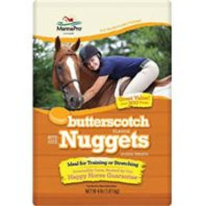 Bite-Size Nuggets Horse Treats