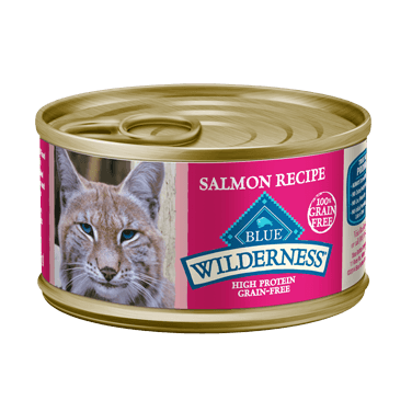 Blue Buffalo Wilderness Salmon Cat