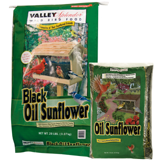 Valley Splendor Black Oil Sunflower Bird Seed