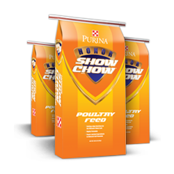 Honor® Show Chow® Poultry Prestarter