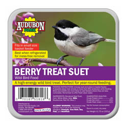 Audubon Berry Treat Suet