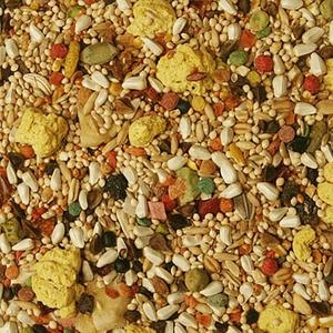 Volkman Seed Co. Small Hookbill Bird Food