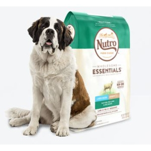 Wholesome Essentials™ Large Breed Puppy Lamb & Rice Recipe
