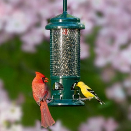 $5.00 off any Bird feeder $25.00 or more