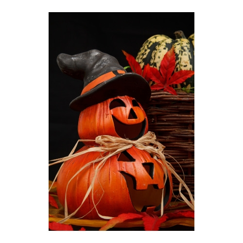 Halloween and Fall Decor 40% OFF