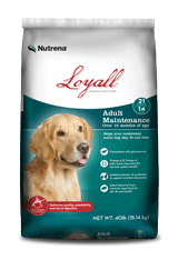 Nutrena Loyall Adult Maintenance Dog Food