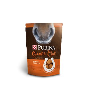 Purina Carrots & Oats Horse Treats