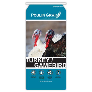 Poulin Grain Turkey/Gamebird Starter Crumbles