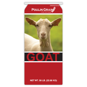 Poulin Grain Sweet Goat 18%