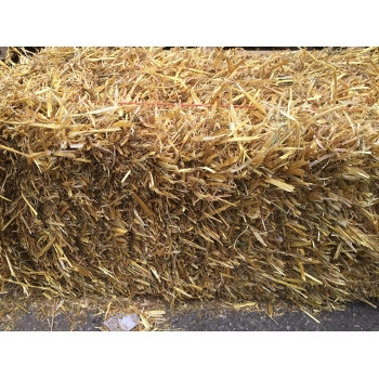 Straw By the Bale