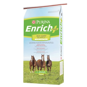Enrich Plus® Ration Balancing Horse Feed