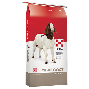 Purina® Goat Grower 16