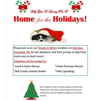 Home for the Holiday's Adoption Event
