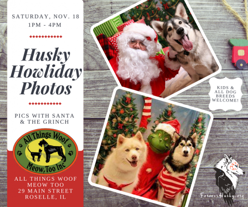 Husky Howliday Photos with the Grinch & Santa Paws