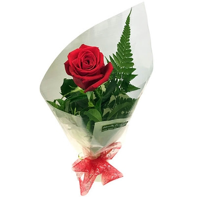 1/2 Priced Special on Wrapped Rose with Green