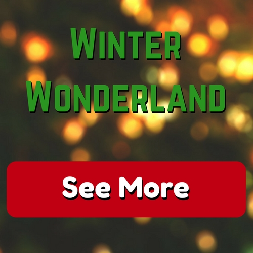 Visit our Winter Wonderland Gallery Page