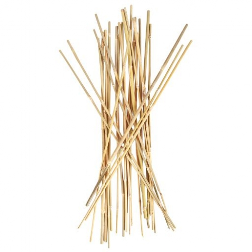 Smart Support® Bamboo Stakes, 4 ft.