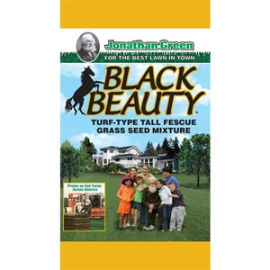Black Beauty™ Grass Seed
