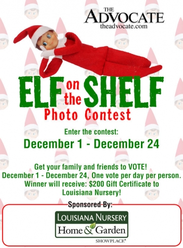 Elf on the Shelf Photo Contest
