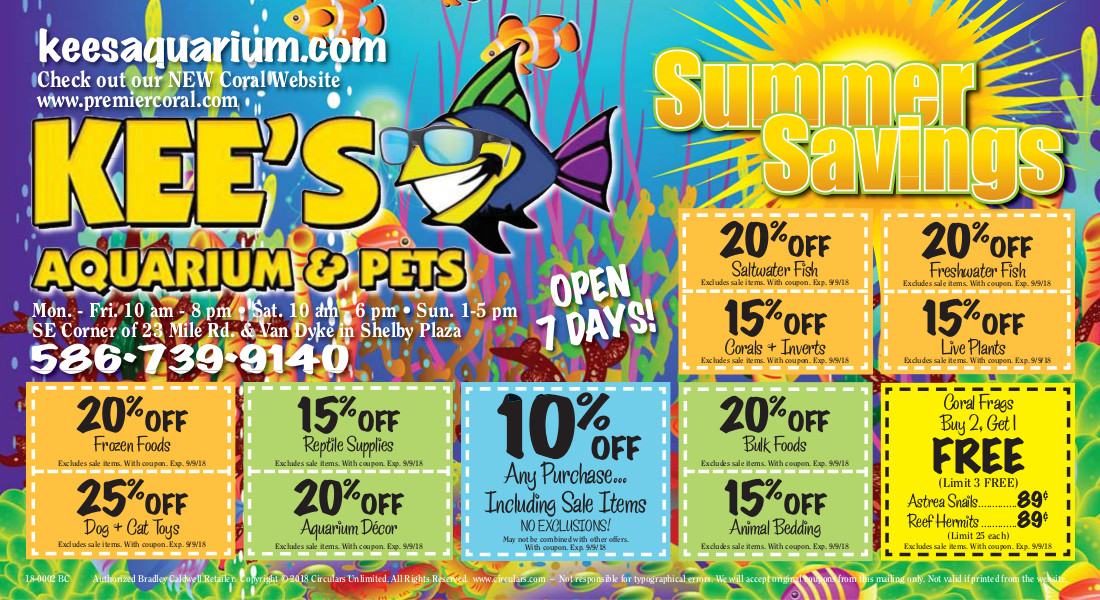 Kee's summer savings page1