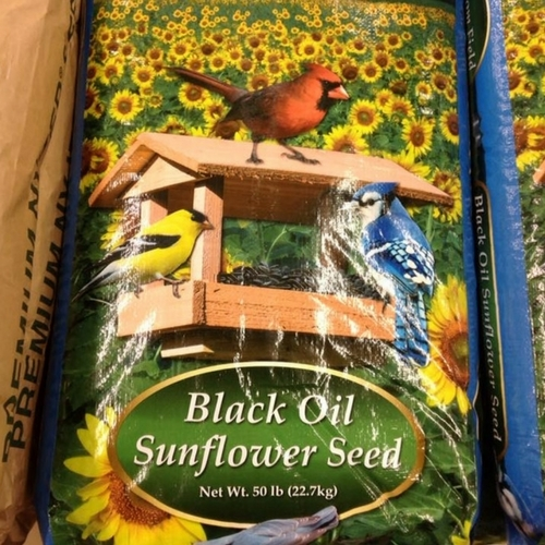 50lb. Black Oil Sunflower Seed - $17.99