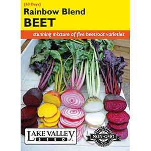 Rainbow Blend Beet Seeds by Lake Valley Seed