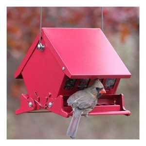 Mini Absolute Squirrel Proof Feeder