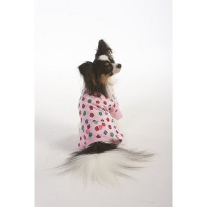 Lookin' Good! By Fashion Pet Owl Print Pajama's - Pink