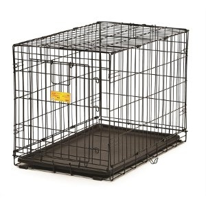 Contour™ Single-Door Dog Crate 36