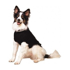 Classic Cable Sweater by Fashion Pet