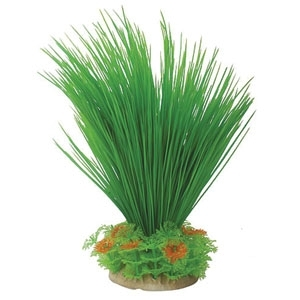 NATURAL ELEMENTS HAIRGRASS