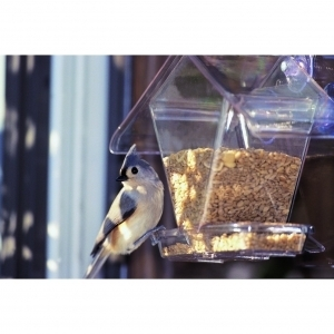 Cafe Window Feeder Clear 3/4 Quart