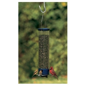 Yankee Whipper Squirrel Proof Bird feeder Blue 21""